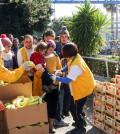 韓國救援隊在希臘援助難民